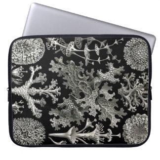 Ernst Haeckel Lichens Laptop Computer Sleeves