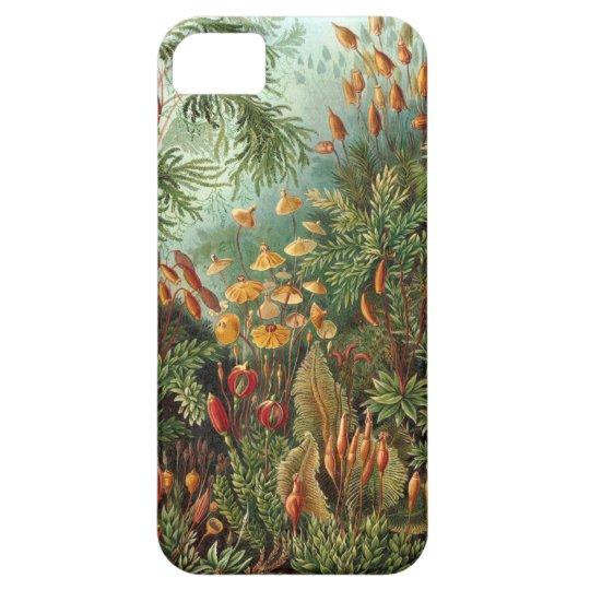 Ernst Haeckel - Muscinae iPhone SE/5/5s Case