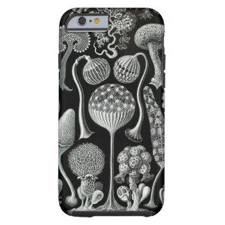 ERNST HAECKEL: Mycetozoa Tough iPhone 6 Case