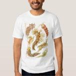 Ernst Haeckel - Nudibranchia Tshirt