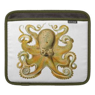 Ernst Haeckel Octopus Ipad sleeve