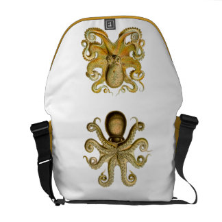 Ernst Haeckel Octopus messenger bag