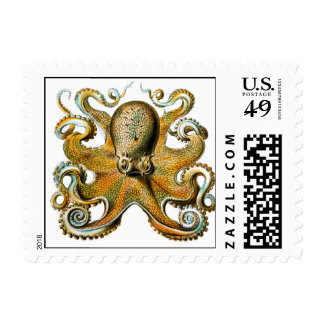 ernst haeckel octopus postage
