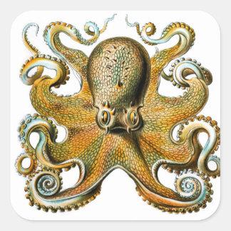 ernst haeckel octopus stickers
