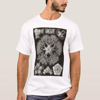 Ernst Haeckel - Ophiodea2 T-Shirt