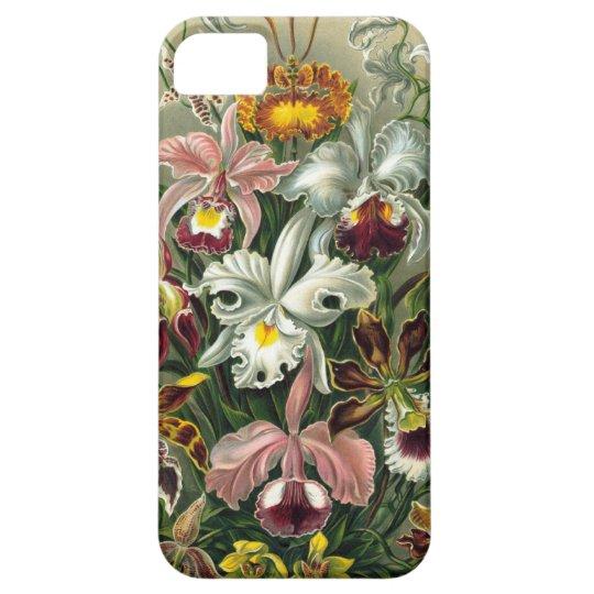Ernst Haeckel - Orchidae iPhone SE/5/5s Case