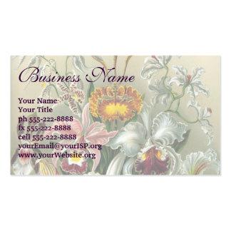 Ernst Haeckel Orchids, Vintage Rainforest Flowers Business Card