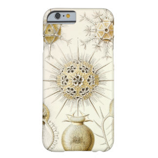 Ernst Haeckel Phaeodaria Barely There iPhone 6 Case