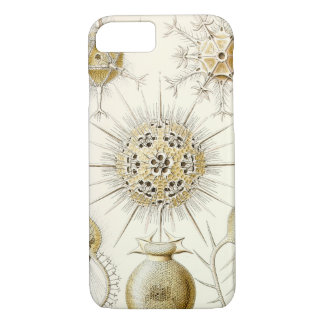 Ernst Haeckel Phaeodaria iPhone 8/7 Case