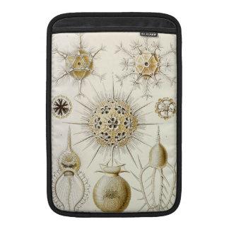 Ernst Haeckel Phaeodaria MacBook Sleeve