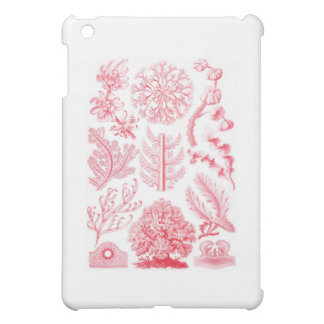 Ernst Haeckel Red Florideae Case For The iPad Mini