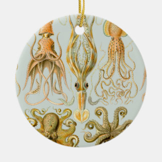 Ernst Haeckel's Gamochonia Ceramic Ornament