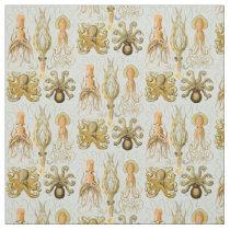 Ernst Haeckel's Gamochonia Fabric