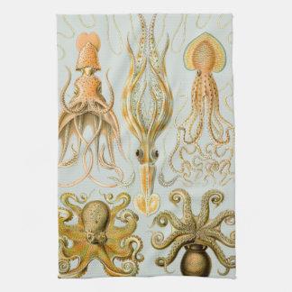 Ernst Haeckel's Gamochonia Hand Towel