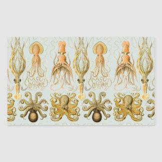 Ernst Haeckel's Gamochonia Rectangular Sticker