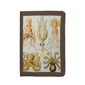 Ernst Haeckel's Gamochonia Tri-fold Wallets