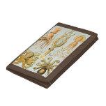 Ernst Haeckel's Gamochonia Trifold Wallets