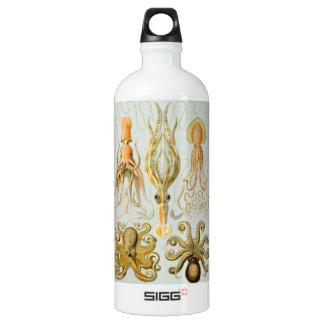 Ernst Haeckel's Gamochonia Water Bottle