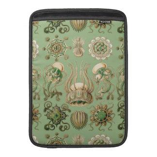 Ernst Haeckel's Narcomedusae MacBook Air Sleeve