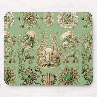 Ernst Haeckel's Narcomedusae Mouse Pad