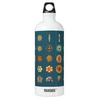 Ernst Haeckel's Ocean Jewels Water Bottle