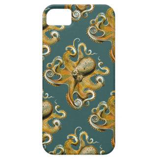 Ernst Haeckel's Octopus iPhone 5 Case