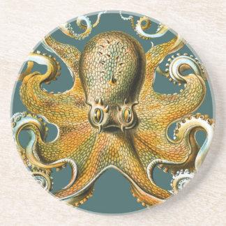 Ernst Haeckel's Octopus Coaster