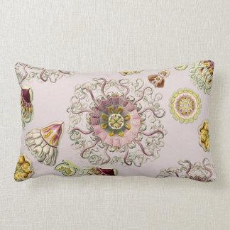 Ernst Haeckel's Peromedusae Throw Pillow