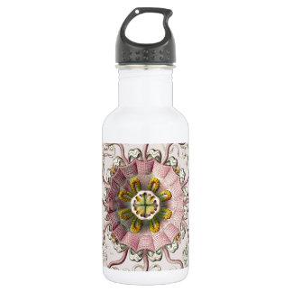 Ernst Haeckel's Peromedusae Water Bottle