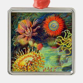 Ernst Haeckel s Sea Anemones Christmas Ornaments