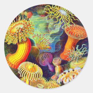 Ernst Haeckel s Sea Anemones Sticker