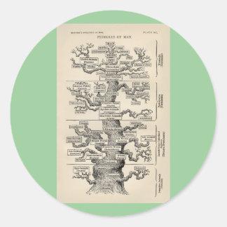 Ernst Haeckel s tree of life Round Sticker