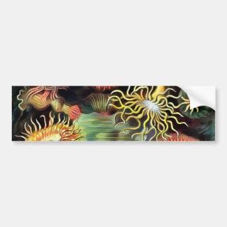 Ernst Haeckel Sea Anemones Vintage Art Car Bumper Sticker