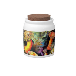 Ernst Haeckel Sea Anemones Vintage Art Candy Jars