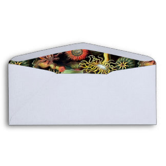 Ernst Haeckel Sea Anemones Vintage Art Envelope