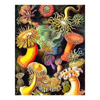 Ernst Haeckel Sea Anemones Vintage Art Flyer
