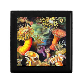 Ernst Haeckel Sea Anemones Vintage Art Gift Box