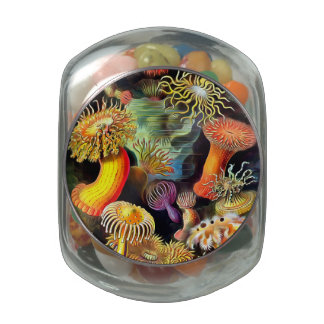 Ernst Haeckel Sea Anemones Vintage Art Glass Candy Jars