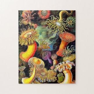 Ernst Haeckel Sea Anemones Vintage Art Jigsaw Puzzle