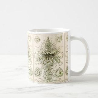 Ernst Haeckel Siphonophorae Coffee Mug