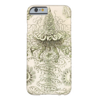 Ernst Haeckel Siphonophorae Funda Barely There iPhone 6