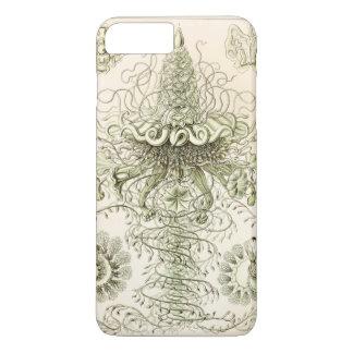 Ernst Haeckel Siphonophorae Funda iPhone 7 Plus