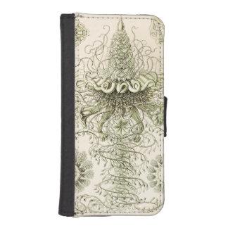 Ernst Haeckel Siphonophorae iPhone SE/5/5s Wallet