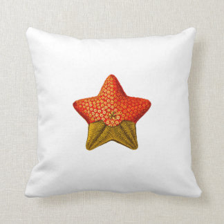 Ernst Haeckel starfish pillow