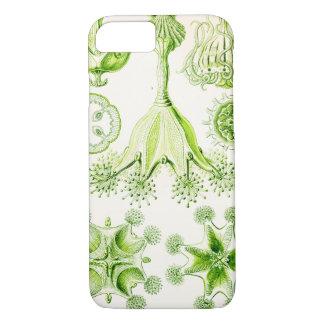 Ernst Haeckel Stauromedusae Stalked Jellyfishes iPhone 8/7 Case
