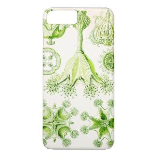 Ernst Haeckel Stauromedusae Stalked Jellyfishes iPhone 8 Plus/7 Plus Case