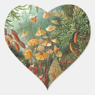 Ernst Haeckel Sticker