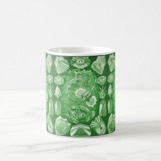Ernst Haeckel Teleostei Classic White Coffee Mug