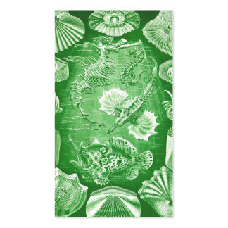 Ernst Haeckel Teleostei Double-Sided Standard Business Cards (Pack Of 100)