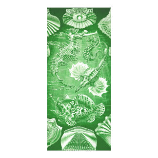 Ernst Haeckel Teleostei Full Color Rack Card